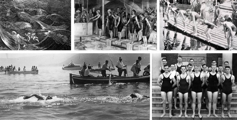 A natação como esporte olímpico: confira essa história!